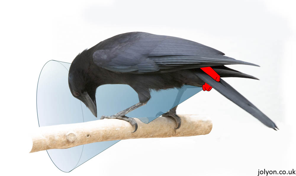 Illustration of the mounting method used for crow-cams