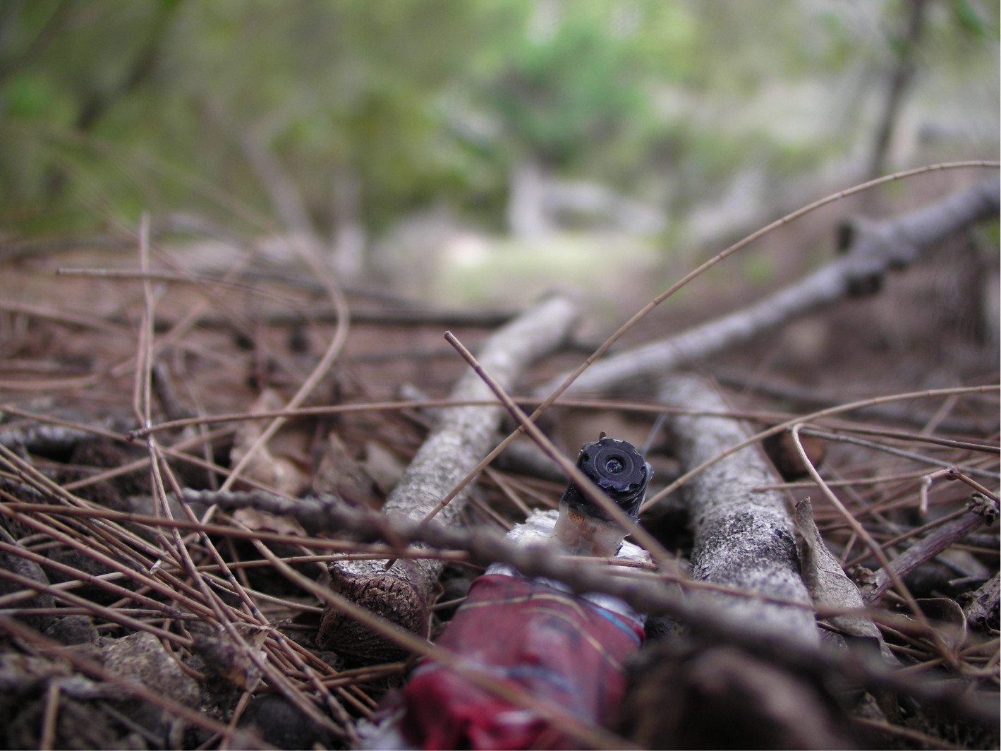 The crow-cams have homing beacons that let us find them on the forest floor when they fall off.