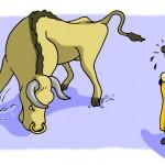 Raging Bull in Blue-Yellow