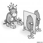 Monkey in Logothetis's Experiment